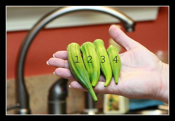 Pickled Okra 2.jpg